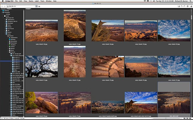 Screen shot from Adobe Bridge of some of the images I am editing this morning; at the time I shot them, I wasn't overwhelmingly pleased with them, but now that I am working them, I like what I am getting.