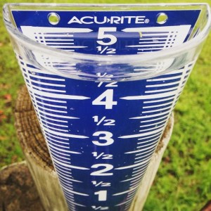 I arrived at home tonight to find that our rain gauge was completely full.