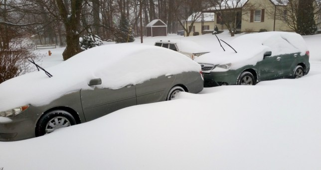 Meanwhile in Baltimore: Tom and Chele sent us this image of the record-breaking snowstorm back east.