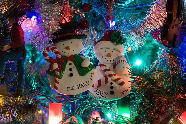 Tom's mother and aunts gave us these beautiful commemorative ornaments, which I hung on the tree when I got home.