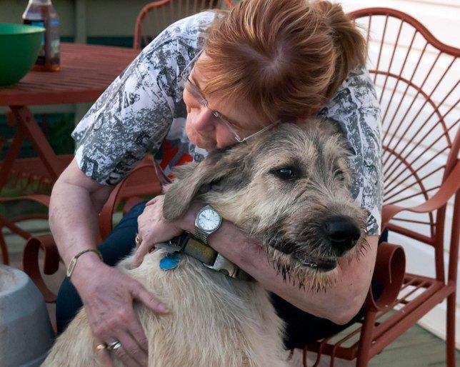 Abby hugs Hawken around the neck. He is her third Irish Wolfhound.