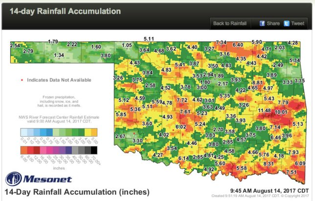 This Oklahoma rainfall map is a patchwork of rain and more rain. To me, it's very welcome, since it's so good for the land.