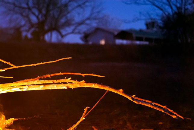Branches from dead trees around my pond hang off my brush pile fire last night, with our house in the distance.