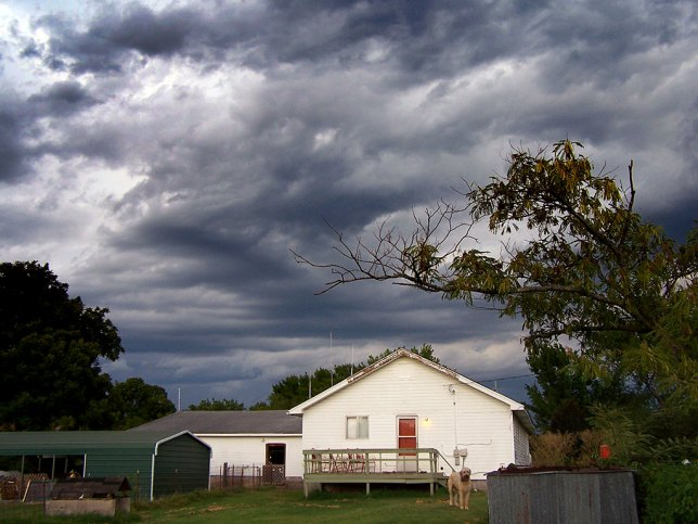 The sky broods above our back yard last week as a weather system prepares to deliver four and a half inches of rain.