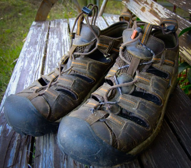 Working outdoors, from walking the Wolfhound to running the chain saw, wears out shoes faster than anything else I do.
