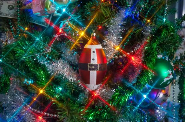 The fat Santa ornament hangs on our Christmas tree this week. The star effect is from a filter I've owned since about 1977, a cross-screen.