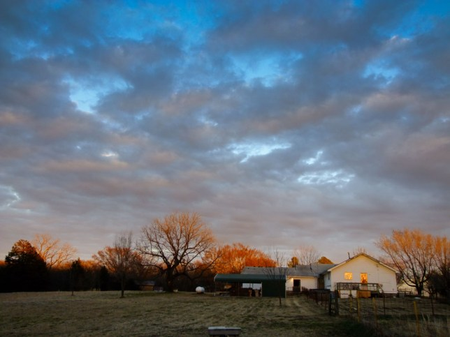 The house and the back yard take on color at last light a couple of nights ago.