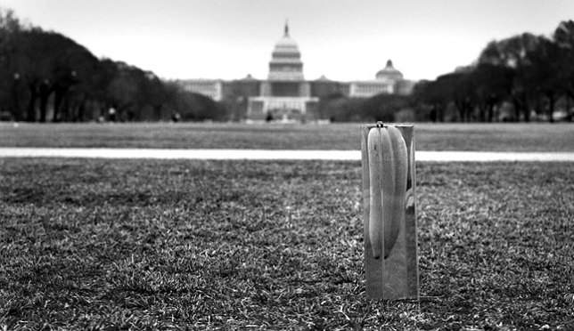 The World's Greatest Siamese Pickle stands proudly with our nation's capital behind it.