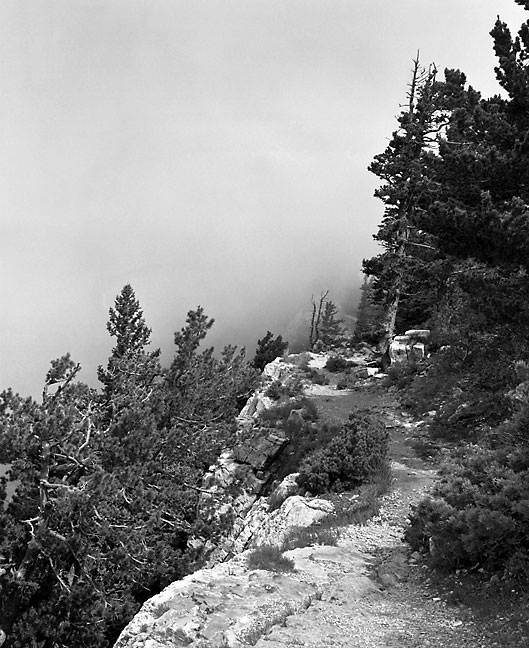 Clouds envelope Sandia Peak in this view from along Sandia Crest above Albuquerque, New Mexico.