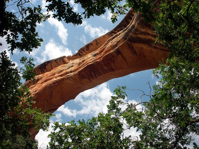 At the bottom of a beautiful trail is Sipapu Bridge, one of the largest natural bridges in the world.