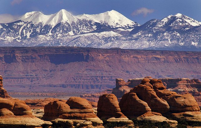 The Needles, Canyonlands, with the La Sal Mountains in the distance