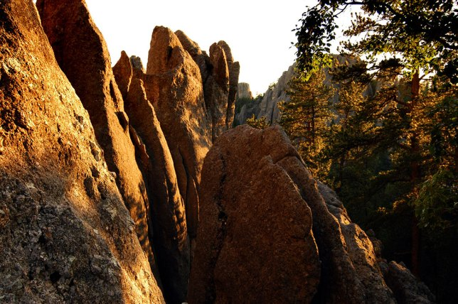 The spindle-like spires give the Needles Highway its name.