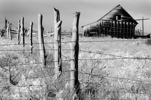 Snow clings to a fence and a house near Monticello, Utah.
