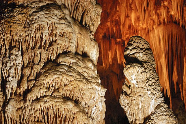 Some features at Carlsbad Caverns National Park; I think the thing on the right looks like it's about to bite the thing on the left.