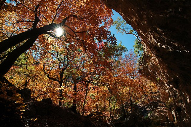 This is a fisheye view from The Grotto in McKittrick Canyon.