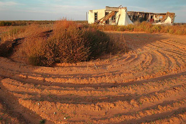 I found this abandoned farm house on my drive through west Texas.
