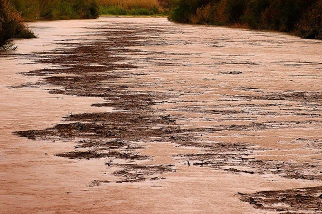 A tremendous volume of debris flows down the Rio Grand in Santa Elena Canyon.