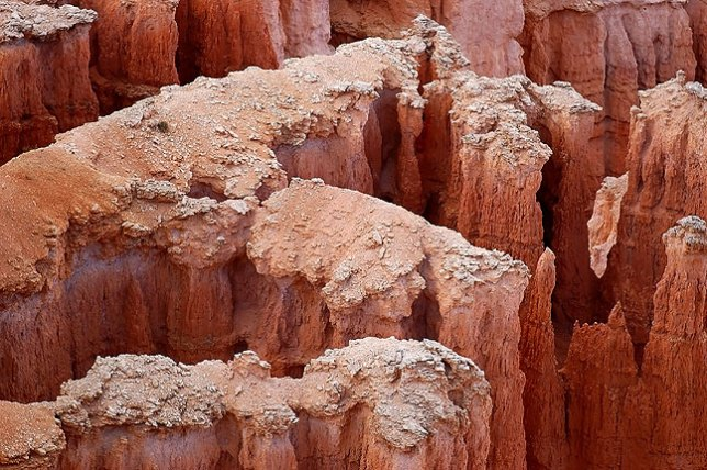 Eroded tops of hoodoos, Bryce Canyon, after sunset.