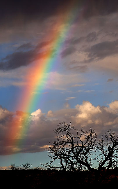 A rainbow emerges in morning virga at Gemini Bridges near Moab, Utah.