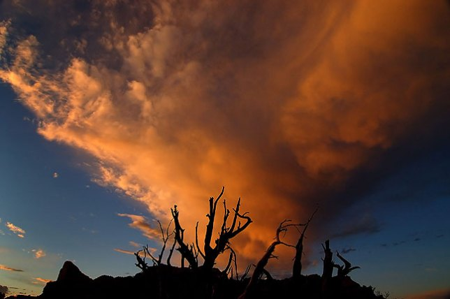 Clouds at sunset, Green River Overlook, Canyonlands National Park