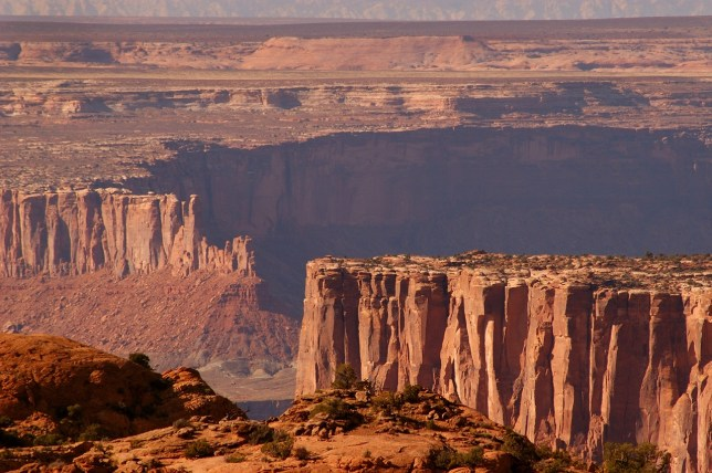 Vast canyons of Wingate sandstone are visible from the Upheaval Dome trail.