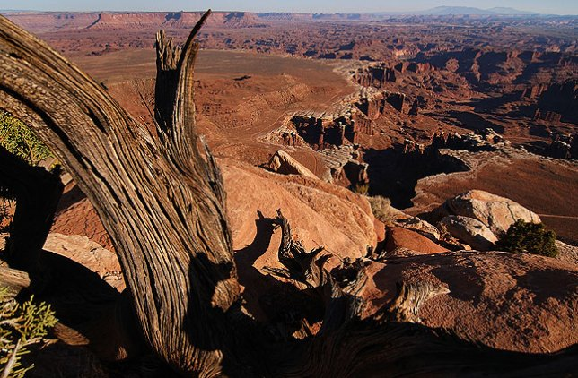 White Rim Overlook, Canyonlands.