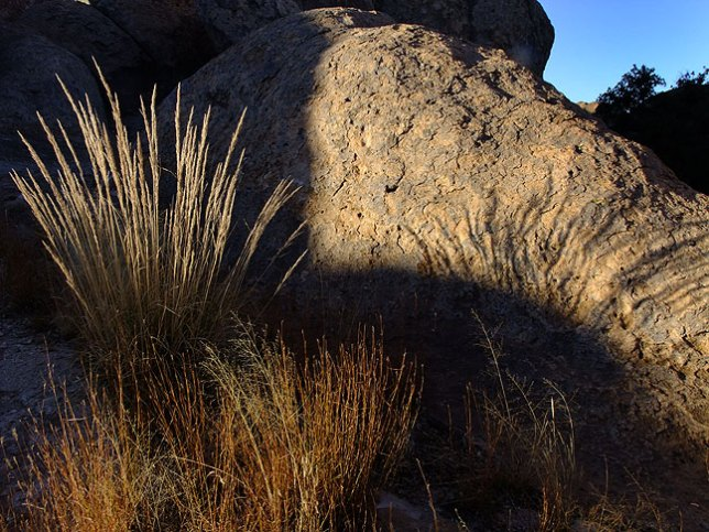 Grass and stone, late afternoon light, City of Rocks.