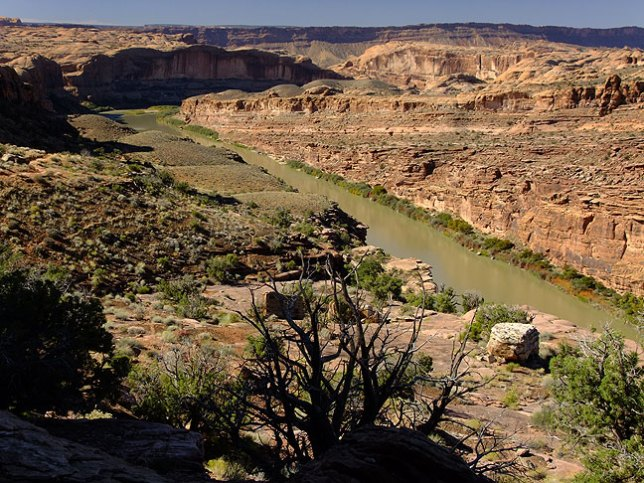 Looking west from the Porcupine Rim trail showing the Colorado River below.