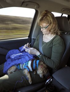 Abby crochets an afghan for our grandson while Sierra the Chihuahua sleeps in her lap as we drive from one venue to the next.