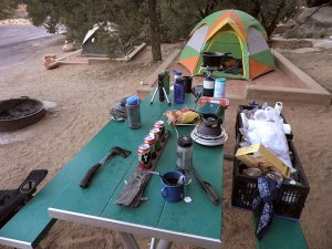 This was our camp site at the Squaw Flat campground in the Needles District of Canyonlands.