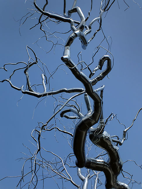 An amazing steel tree adorns a section of the National Gallery's Sculpture Garden.