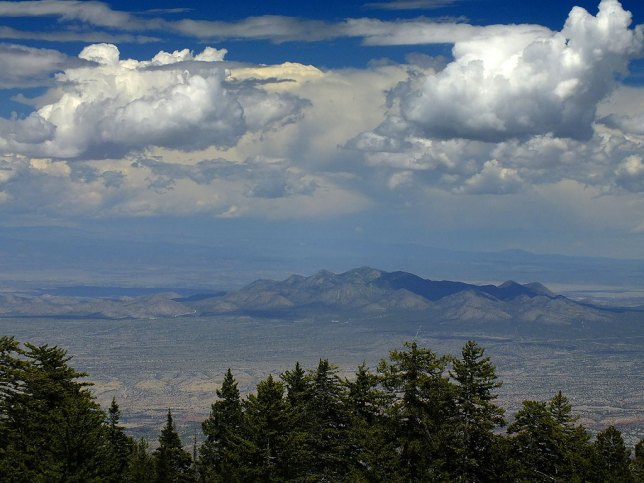 The view from Sandia Peak was great, as in this image looking east.