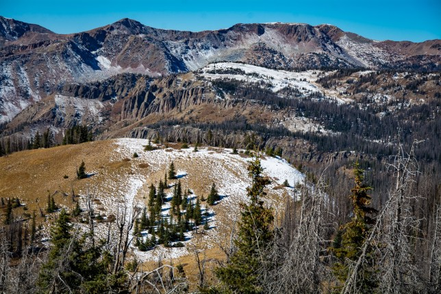 The Lobo Overlook is close to the tree line. This view looks west.