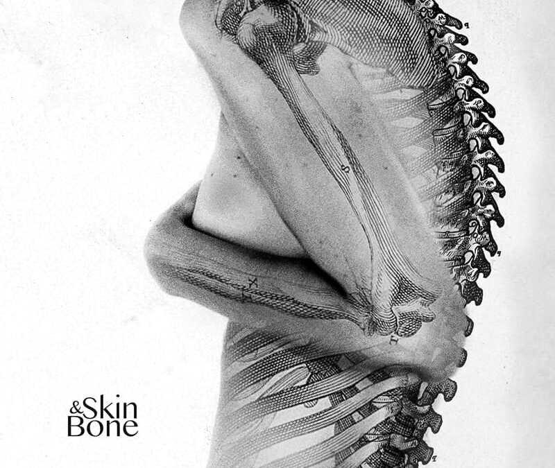 Skin & Bone