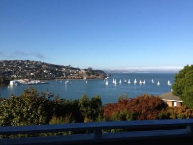 Sailboats on SF Bay