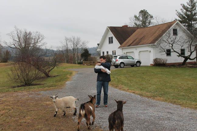 Kathy Meets Goats