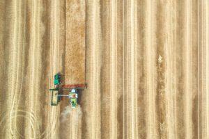 Zaaien om te oogsten – dag 85 van 90