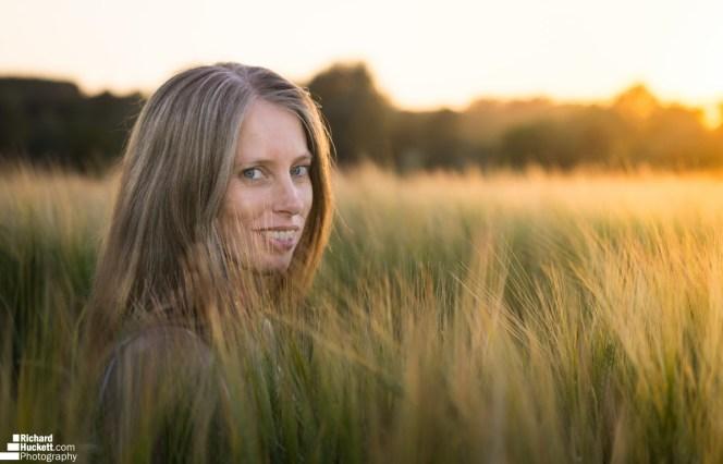 wheat-field_41333567610_o
