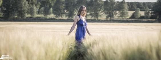 wheat-field_41333583530_o