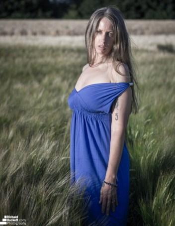 wheat-field_43144630061_o