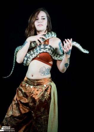 snake-night_44730040864_o