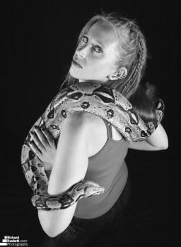snake-night_44730041784_o