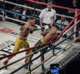 ultimate-boxer-ii_44968600784_o