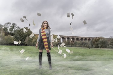 Harry Potter (39)