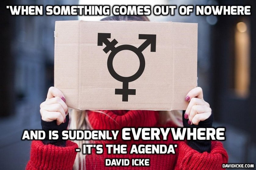 David Icke Sussex School Gender Neutral