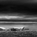 The Newfoundland Iceberg Show