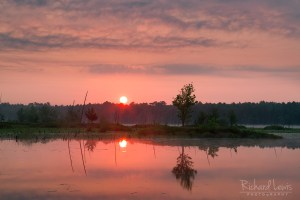 Piney Sunrise in the Franklin Parker Preserve NJ Pinelands by Richard Lewis
