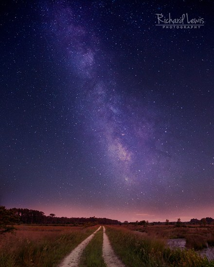 Milky Way In The New Jersey Pine Barrens