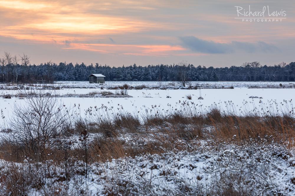 Whitesbog Snow Scape Pine Barrens New Jersey