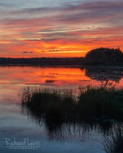 Pine Barrens Afterglow Refection by Richard Lewis